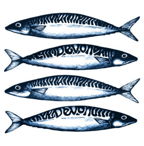 Devon Mackerel